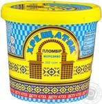 Hladyk Frozen Ice-cream Plombir Khreshchatyk
