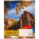 Зошит Тетрада 48 аркушів в клітинку картонна обкладинка