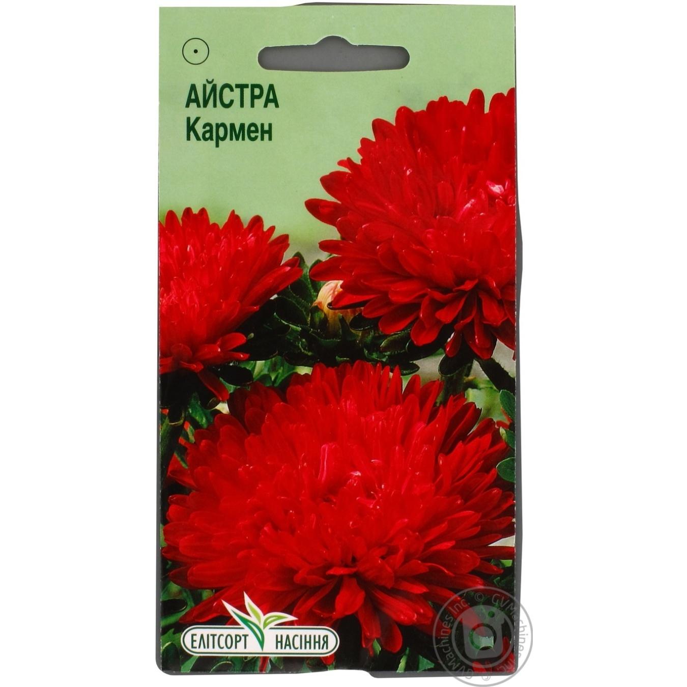 Квіти Айстра Кармен 0 c479f3874749f