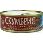 Скумбрія Брівайс Вільніс в томатному соусі 240г