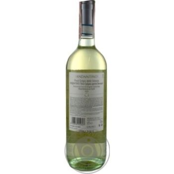 Вино Andantino Pinot Grigio delle Venezie белое сухое 12% 0,75л - купить, цены на МегаМаркет - фото 2