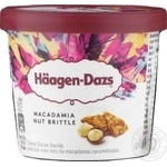 Ice-cream Haagen-dazs with vanilla 100ml bucket