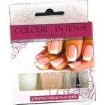 Лак для ногтей Color Intense French Manicure Set №202