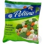 Vegetables broccoli Poltino frozen 450g