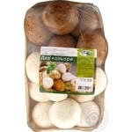 Dinbo mix fresh mushrooms 500g