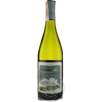 Вино The Capeography Co Cloudscape Sauvignon Blanc біле сухе 12,5% 0,75л - купити, ціни на Метро - фото 1