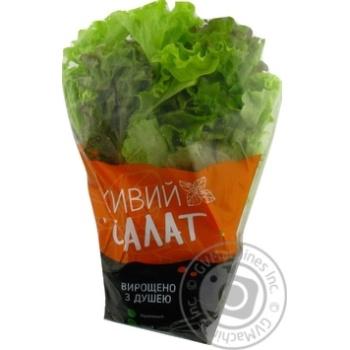 Vershky ta Korintsi Lollo Rosso, Lollo Bionda Lettuce Salad Mix 180g - buy, prices for Novus - image 1