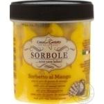 Casa del Gelato With Mango Sorbet 300g