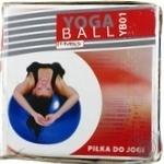 М`яч гімнастичний 75см YB01(75) - купити, ціни на МегаМаркет - фото 1