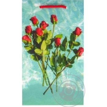 Пакет Sabona подарочный 25,5х15см в ассортименте